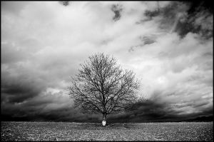 The Tree and me by jfphotography