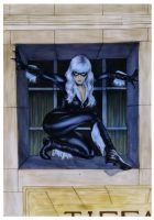 Black Cat by gattadonna