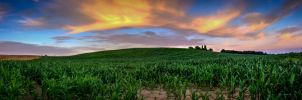 Little Corn Hill by FreeForms
