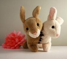 Two Head Bunny by Jadetiger