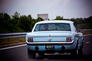 'Stang cruising... by Romton