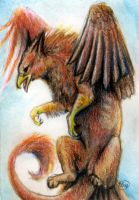 Griffon ACEO by animalartist16