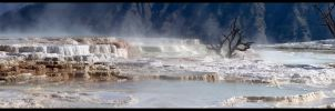 Yellowstone by Klytia70