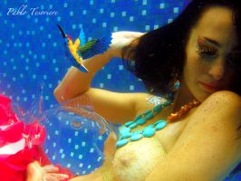 UNDERWATER PHOTOGRAPHY 17 by pablotesoriere