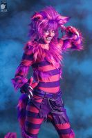 Cheshire Cat by Kifir