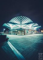 The Carousel Waterfront Geelong by WillCook