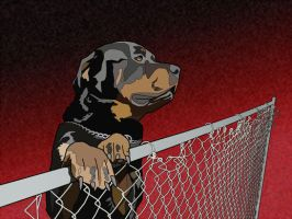 Rottweiler by TheDocProc