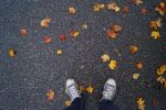 Leaves, the color of autumn by OscarInTheClouds