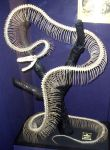 Snake Skeleton 2 by aussiegal7