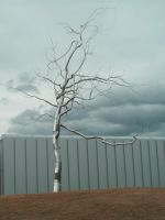 :Stock: Metal Tree 1 by RebeccaLongArt