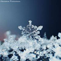 Twinkling Snowflakes by AljoschaThielen