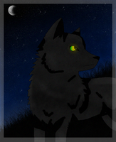 RQ: +Black Wolf+ by Field-Of-Roses