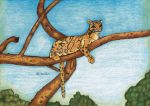Clouded Leopard - Into the Wilderness by NemuArt