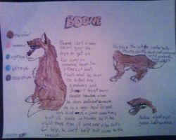 Boone-contest character sheet by KK-koolness