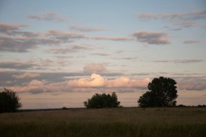 Wide Open Spaces by Navina
