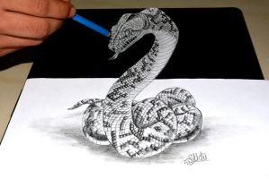 3D Anamorphic Snake by SudarshanGB