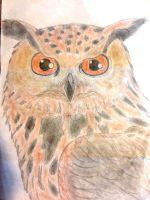 Eagle owl by GuardianOfNightmares