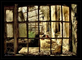 The Greenhouse Effect by Inebriantia