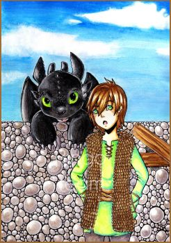 HTTYD - Hiccup and Toothless by RingoTeam