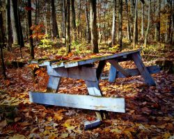 Abandon picnic table by madlynx