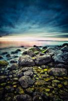 Moment from nature XIV by FLixter