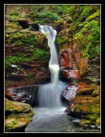 Adams Falls at Ricketts Glen by Dracoart
