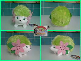 Shaymin TakaraTomy plush by Gallade007