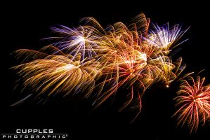 Firework #5 by cupplesey