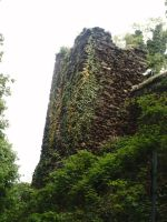 Ivy Covered Tower By PVS by pixievamp-stock