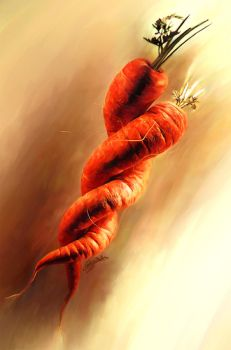 carrot by wah431996