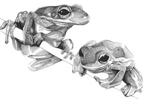 Frogs +Ink+ by JLGribble