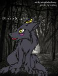Black Night for PNP by ringthebellamy