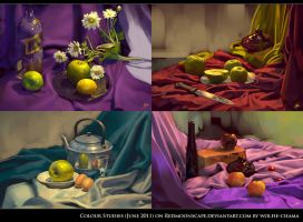 Still Life -June 2011- by Wolfie-chama