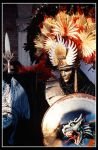 Feathered warrior by multix