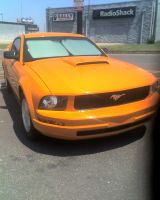 Orange Mustang by FhynixPhotos