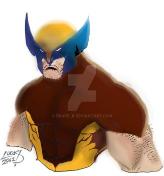 Wolverine colors 1 by Drakelb