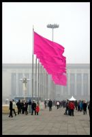 The People's Flag by taejo