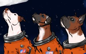 Astrodoges2 by Atomicvideohead