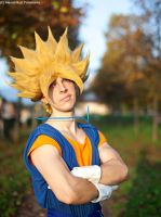 Vegetto Ssj Cosplay .:Look at the orizon:. by Alexcloudsquall