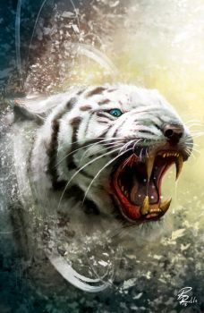 Rage of Tiger by shiprock