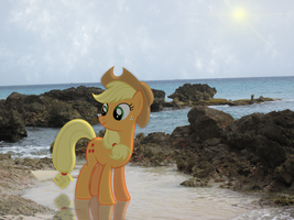 Applejack In The Caribbean by RDbrony16