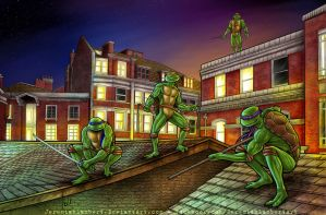 Teenage Mutant Ninja Turtles by JeremiahLambertArt