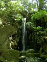 Japan Waterfall by stan123276