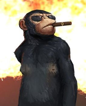 Cool Monkey by DonTranes