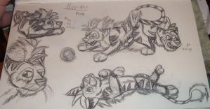 feral Bounder sketches by Colliequest