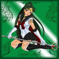 Sailor Pluto Flower Frame by phoenixcrash