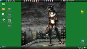 Feb 2011: A Look Over the City by Catwoman69y2k