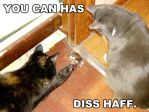 LOLcats catching mouse by Carrie-Ann