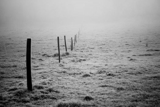 gap in the fence by stillnotsorry