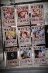 The Straw Hat Crew Wanted by ValeforHo